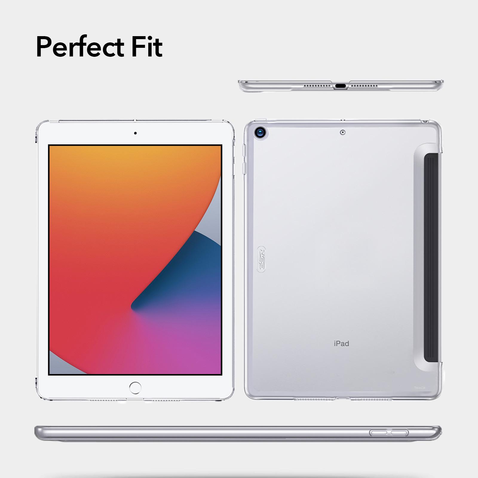 Crystal Clear Hard Back case for iPad 10.2